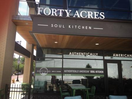 fortyacres1